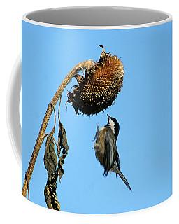 Chickadee In Flight Coffee Mug