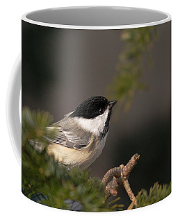 Chickadee In The Shadows Coffee Mug