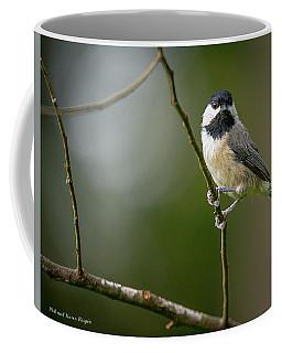 Chickadee On A Branch Coffee Mug