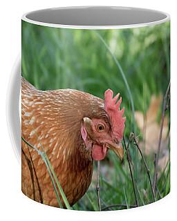 Chicken In Grass Coffee Mug