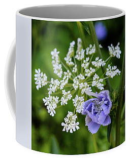 Chicory And Queen Anne's Lace Coffee Mug