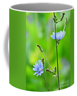 Chicory Coffee Mug