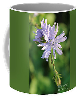 Chicory With Guests Coffee Mug