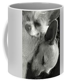 Chihuahua Best Friends Bw Coffee Mug
