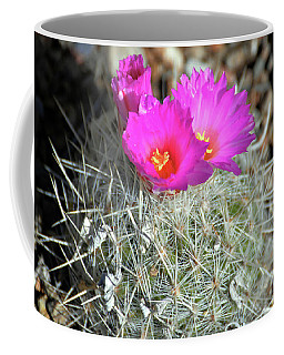 Chihuahua Snowball 2 Coffee Mug