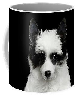 Chinese Crested Puppy Coffee Mug