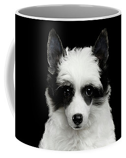 Coffee Mug featuring the photograph Chinese Crested Puppy by Sergey Taran