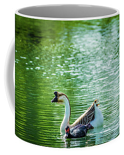 Chinese Goose Also Known As A Domestic Swan Goose And Muscovy Duck  Coffee Mug