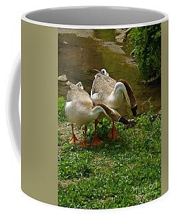 Chinese Swan Geese Coffee Mug