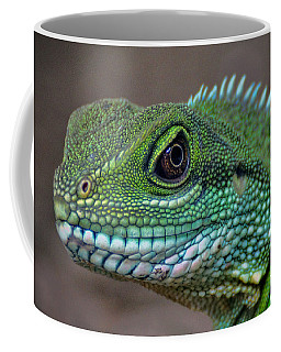 Coffee Mug featuring the photograph Chinese Water Dragon by Savannah Gibbs