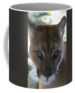 Coffee Mug featuring the photograph Chinook by Laddie Halupa