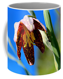 Chocolate Lily Coffee Mug