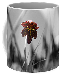 Chocolate Lily Three Coffee Mug