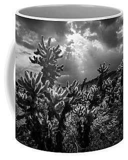 Coffee Mug featuring the photograph Cholla Cactus Garden Bathed In Sunlight In Black And White by Randall Nyhof