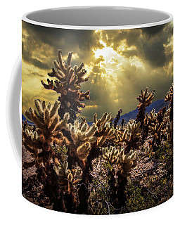 Coffee Mug featuring the photograph Cholla Cactus Garden Bathed In Sunlight In Joshua Tree National Park by Randall Nyhof