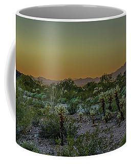 Cholla Desert Sunset Coffee Mug