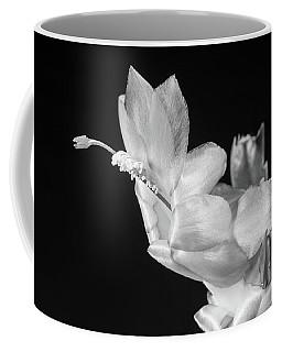 Christmas Cactus On Black Coffee Mug by Ed Cilley