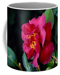 Christmas Camellia Coffee Mug by Marie Hicks