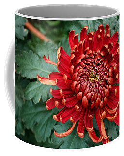 Christmas Chrysanthemum Coffee Mug