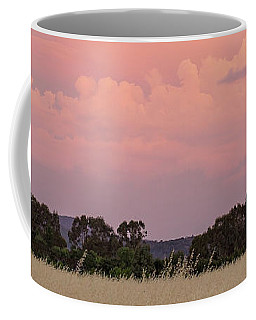 Coffee Mug featuring the photograph Christmas Eve In Australia by Linda Lees