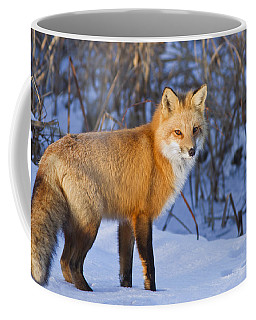 Christmas Fox Coffee Mug