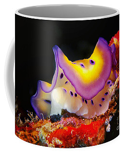 Chromodoris Kunei Nudibranch  Coffee Mug
