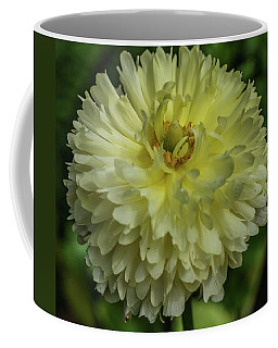 Chrysanthemum Coffee Mug by Jane Luxton