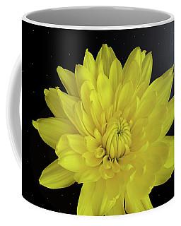Chrysanthemum Star Coffee Mug
