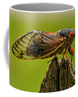 Cicada On Fence Post Coffee Mug by Jim Moore