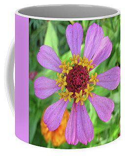 Cinderella Flower Coffee Mug