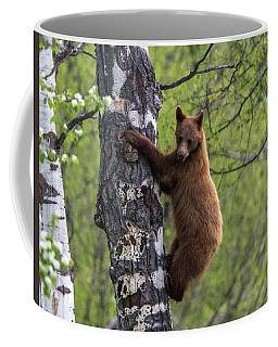 Cinnamon Climb Coffee Mug