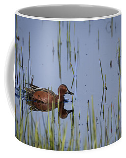 Cinnamon Teal Adult Male Coffee Mug
