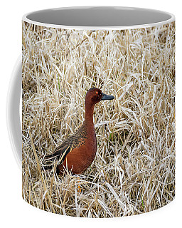Cinnamon Teal Coffee Mug
