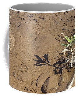Coffee Mug featuring the photograph Circle Shadow Plant by Marie Neder