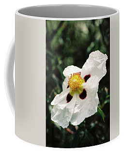 Cistus Rock Rose Side View Coffee Mug