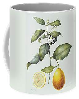 Citrus Lemon Coffee Mug