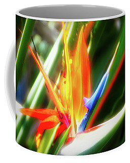 Coffee Mug featuring the photograph City Flare Bird Of Paradise by Aimee L Maher Photography and Art Visit ALMGallerydotcom