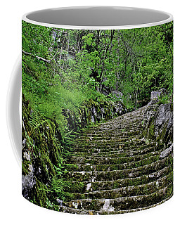Coffee Mug featuring the photograph Clark Reservation  by Suzanne Stout
