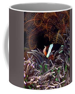 Clark's Anemonefish, Indonesia 2 Coffee Mug