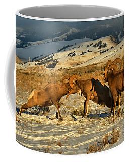 Clash Of The Bighorn Brawlers Crop Coffee Mug
