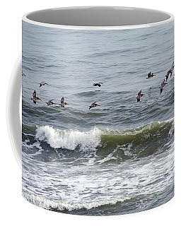 Classic Brown Pelicans Coffee Mug