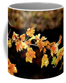 Coffee Mug featuring the photograph Classic Colors by Ron Cline