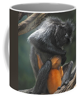 Coffee Mug featuring the photograph Cleaning Baby by Richard Bryce and Family