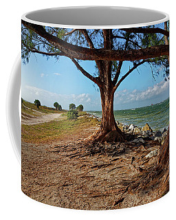 Coffee Mug featuring the photograph Clearwater Pass 1 by Paul Mashburn