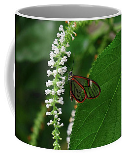 Clearwing Butterfly Coffee Mug