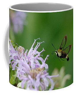 Clearwing Moth Coffee Mug