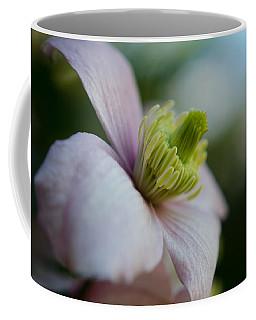 Clematis Flower Face Of Spring Coffee Mug