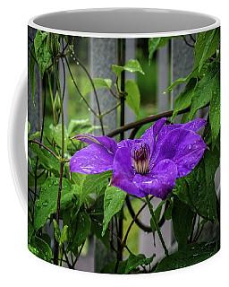 Clematis In Purple Coffee Mug