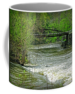 Cleveland Metropark Bridge Coffee Mug