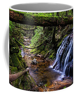 Cliff Gilker Park Coffee Mug
